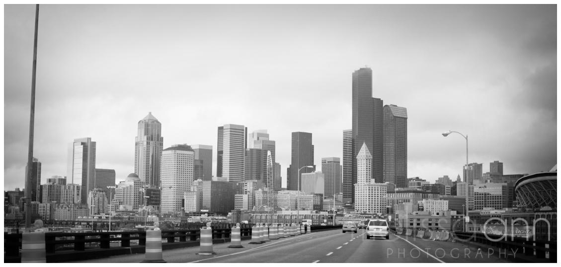 Seattle-City-Travel-Photo