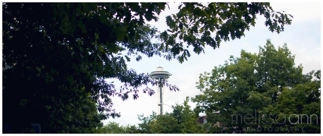 Seattle-Washington-Travel-Photo