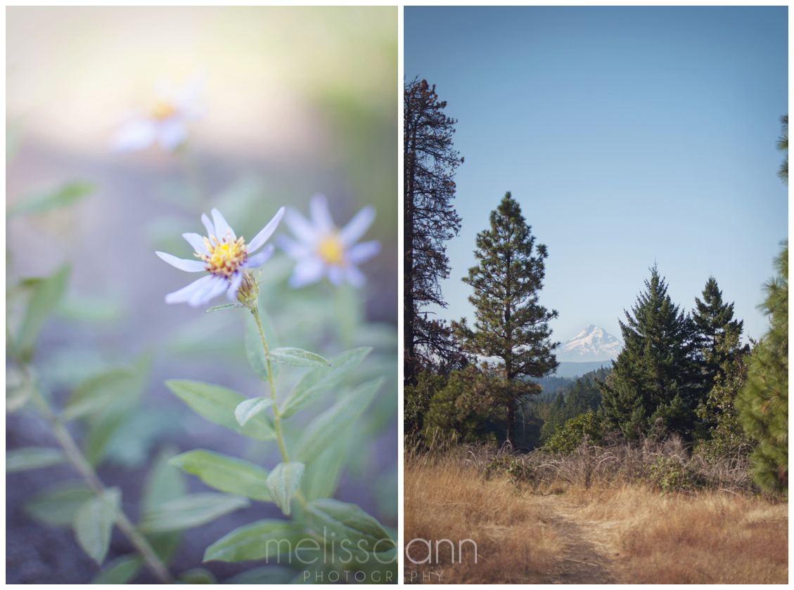 Northwest-Mt. Hood-Travel-Photo